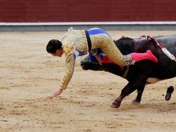 """El diestro Rubén Pinar es cogido por el todo durante la tradicional corrida del """"Día de la Hispanidad"""""""