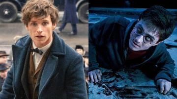 'Animales Fantásticos' y 'Harry Potter'