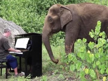 Paul Barton tocando el piano