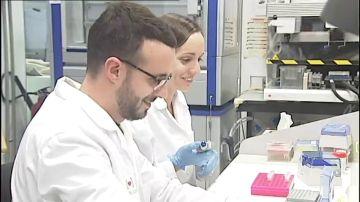 Investigadores españoles consiguen eliminar el VIH en personas con trasplantes de células madre