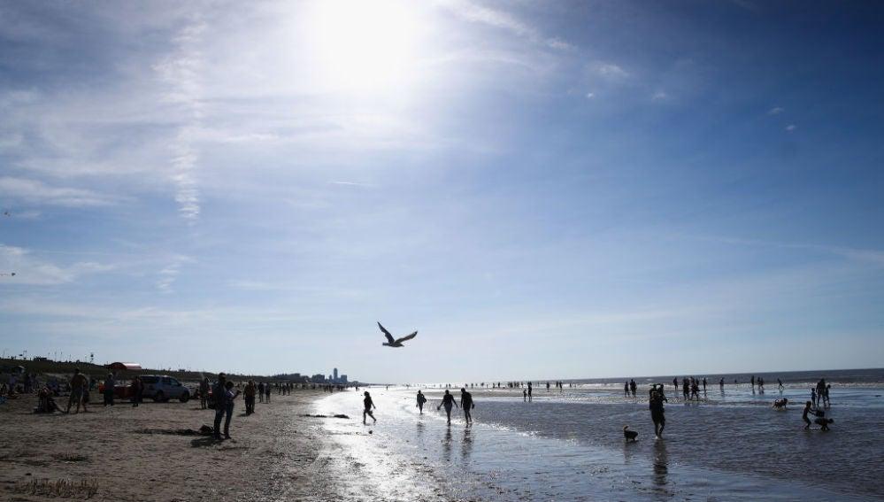 Un día de playa (16-10-2018)