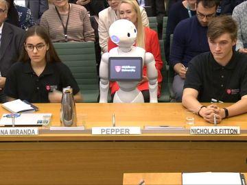 Los diputados del Parlamento Británico toman declaración a un robot