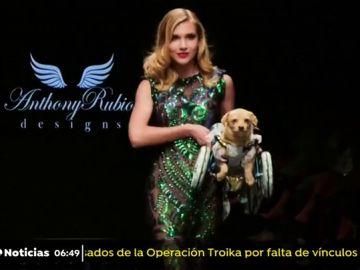 Un perro desfila con silla de ruedas en la semana de la moda de Los Ángeles