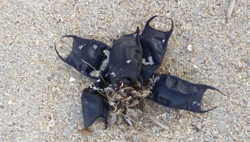 Monederos de playa