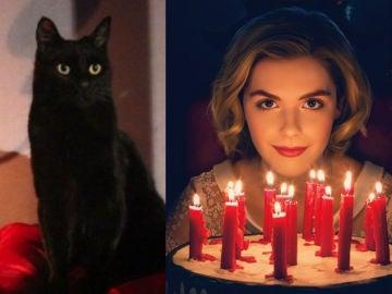 Salem y Sabrina en 'Las escalofriantes aventuras de Sabrina'