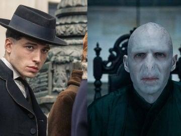 ¿Es posible que Credence sea Voldemort?