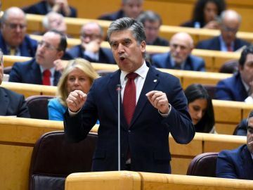 El portavoz popular en el Senado, Ignacio Cosidó