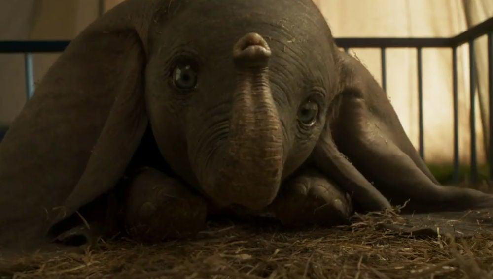 'Dumbo', el remake de Tim Burton