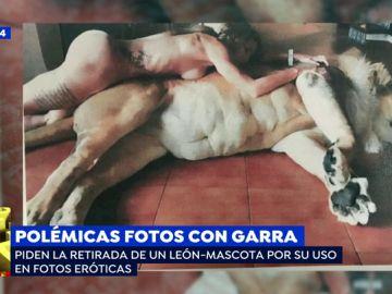 """Intentan retirar el león-mascota a una pareja por su uso en fotos eróticas: """"Vivimos en pelotas y nos encanta"""""""