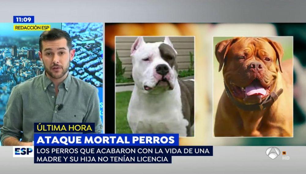 Ataque de perros en Colmenar de Oreja.