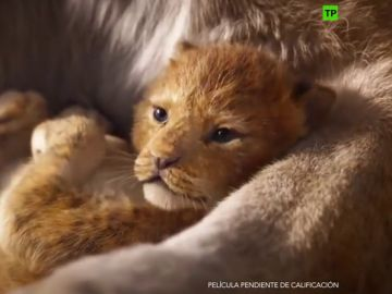 Así es el tráiler del remake en acción real de 'El Rey León'