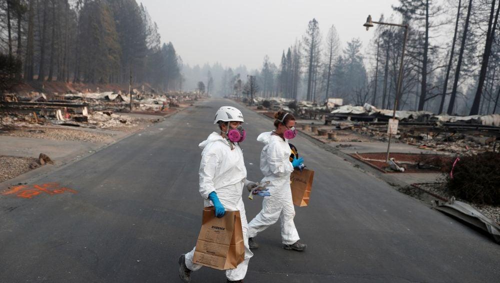 Zonas arrasadas tras el incendio de California