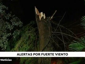 REEMPLAZO Gran parte de España, en aviso por fuertes vientos y oleaje