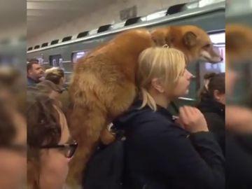 Una mujer carga con un zorro sobre los hombros por el metro de Moscú