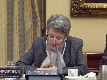 """Rosa María Mateo pide disculpas al diputado del PP al que insultó en su comparecencia parlamentaria: """"No respeté la cortesía"""""""