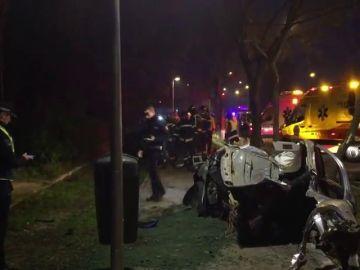 Fallece un conductor al estrellar su vehículo contra un árbol