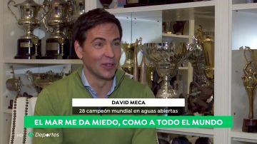 DavidMecaA3D