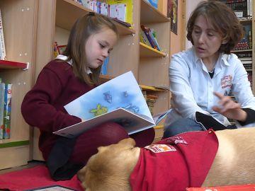 perro lector