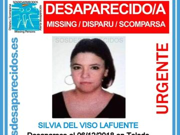 Silvia del Viso, desaparecida en Toledo