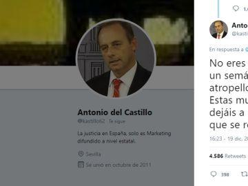 Tuit de Antonio del Castillo