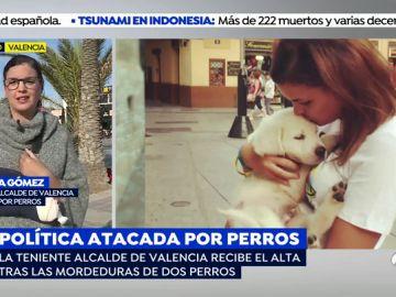 Ataque de perros peligrosos a la teniente de alcalde de Valencia