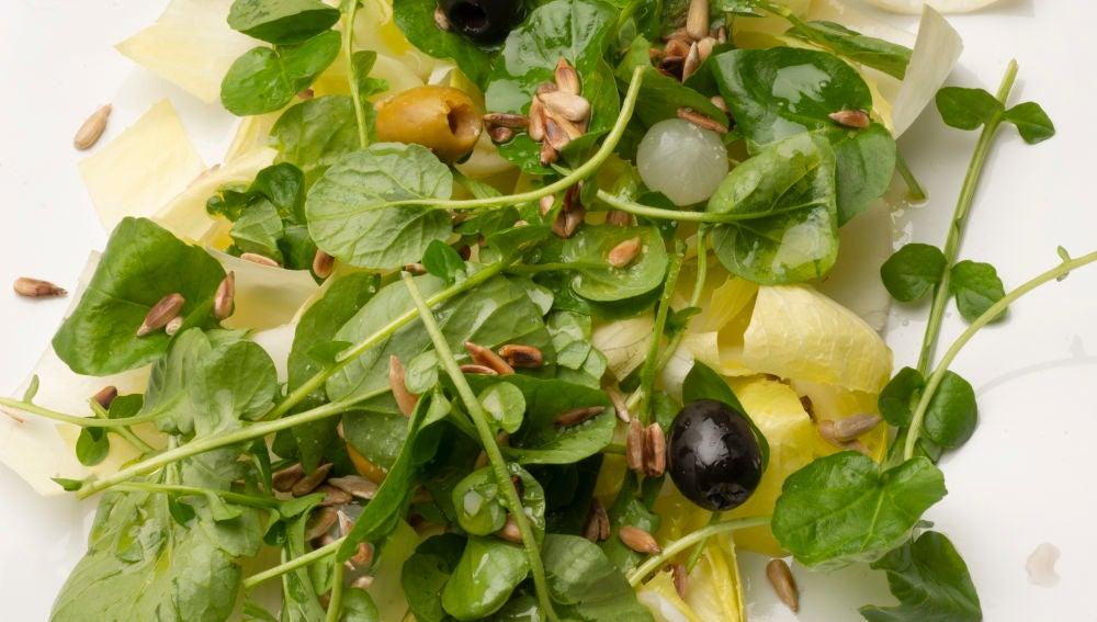 Ensalada de endibias, berros y pipas