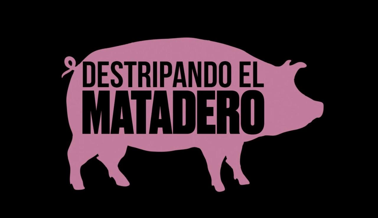 Transmedia - Matadero