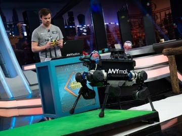 Marron presenta el 'perro robot' en 'El Hormiguero 3.0': es capaz de llegar donde otros no pueden