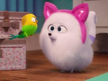 Bridget en 'Mascotas 2'