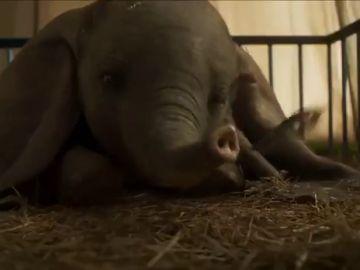 El nuevo tráiler de 'Dumbo' que te hará llorar de emoción