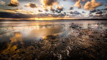 Playa de Yorkshire