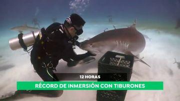 Karlos Simón, el hombre que 'susurra' a los tiburones