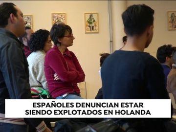 """Alertan de las falsas ofertas de trabajo en Holanda: """"Pintan un empleo de ensueño que no se corresponde con la realidad"""""""