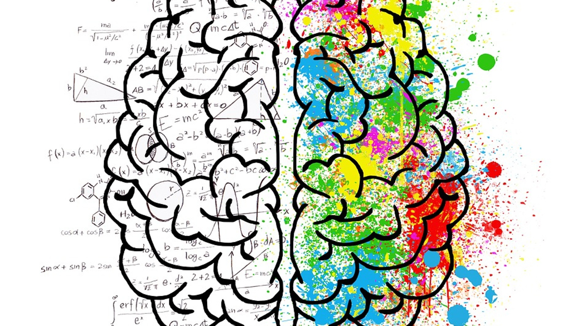 Dibujo de un cerebro