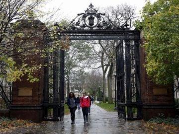 Estudiantes caminando por el campus de Yale