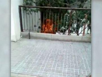 Momentos de caos en un incendio en El Polvorín