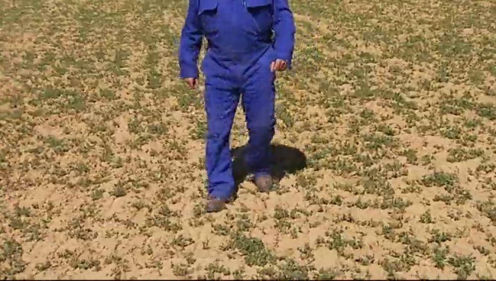 La sequía, principal preocupación de los ganaderos y agricultores