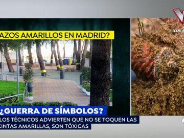 Aparecen 'lazos amarillos' en un barrio de Madrid y resultan ser cintas contra una plaga de orugas
