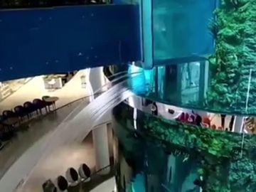 Se rompe uno de los acuarios más grandes del mundo