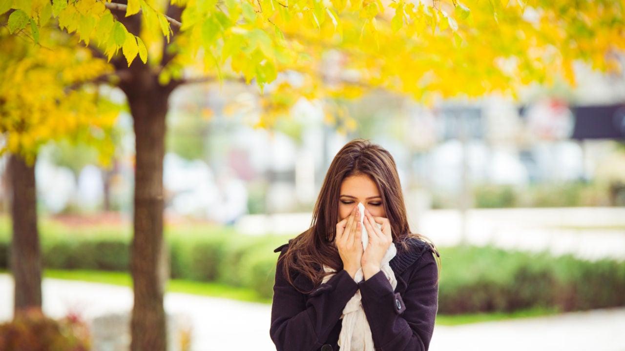 cebolla ajo y miel para el asma