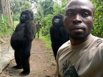 El ´selfie´de un de un guarda forestal con dos gorilas