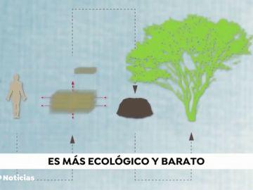 REEMPLAZO: Así funciona la 'composta humana', el proceso que pretende usar a las personas fallecidas como 'abono' para plantar árboles