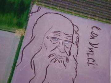 Un artista italiano crea un gigantesco retrato de Leonardo Da Vinci en un campo