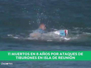 Un surfista muere al ser atacado por un tiburón en la Isla de Reunión