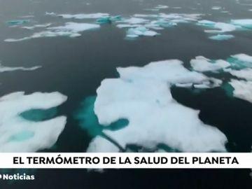 Una avioneta graba la situación del Ártico para alertar de los efectos del cambio climático