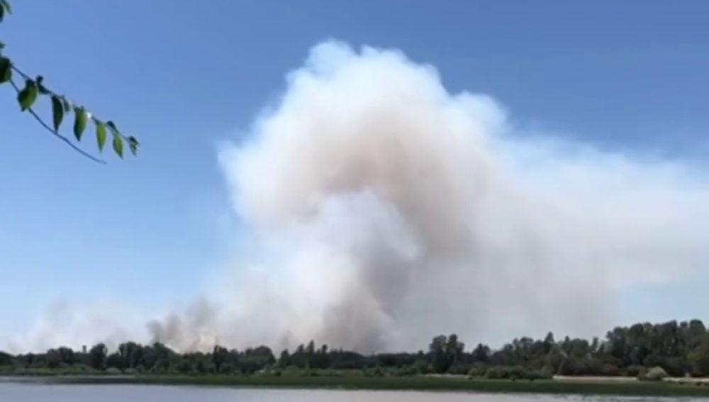Controlado un incendio forestal en el Espacio Natural de Doñana