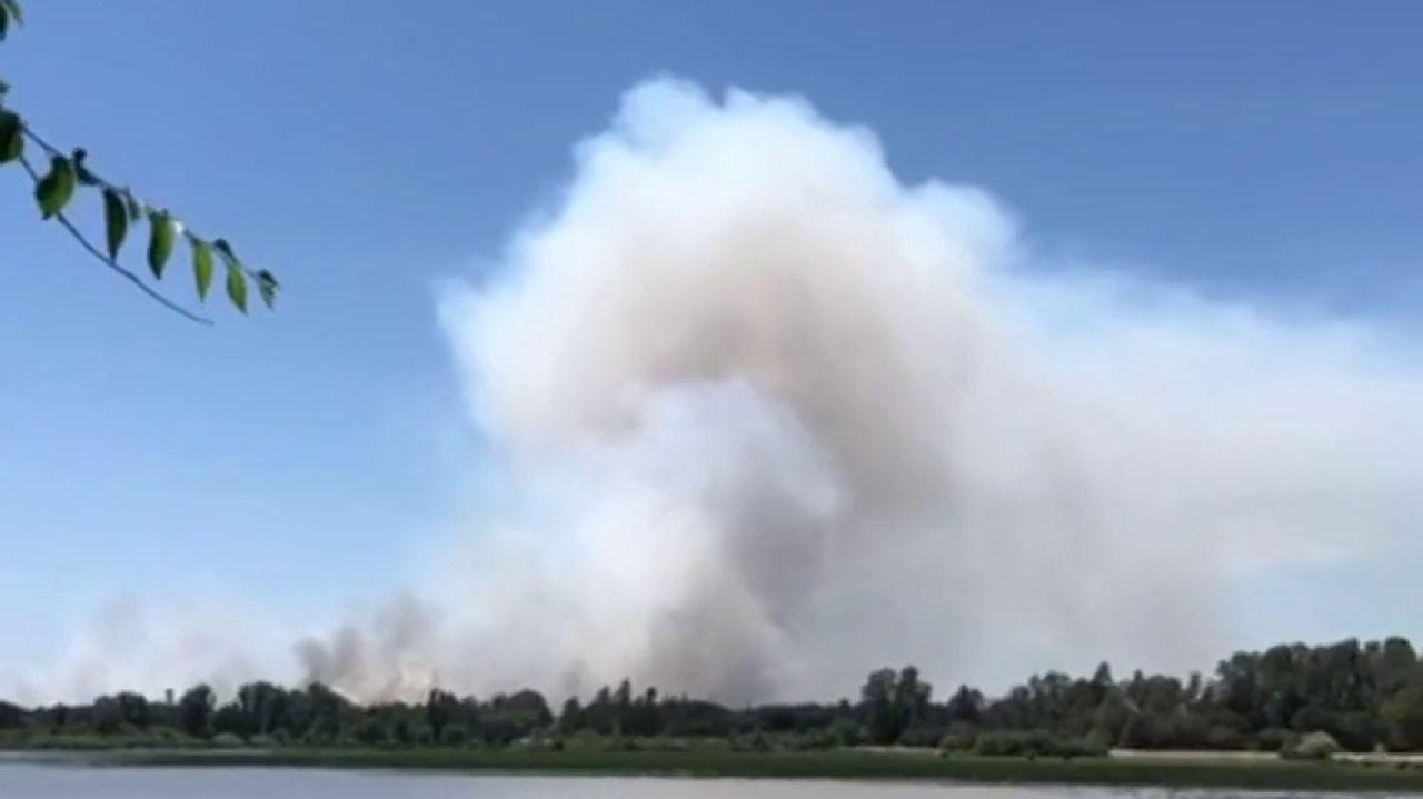 Controlado El Incendio Forestal En El Espacio Natural De