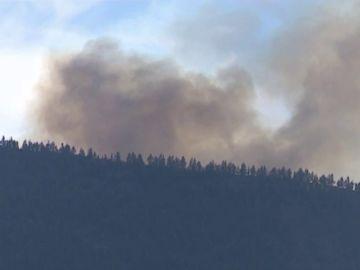 Los efectivos dan por controlado el incendio del Teide