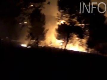 Cientos de efectivos continúan trabajando para extinguir un incendio en Huelva