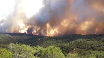 Se complica el incendio de Vinebre en Tarragona: Hay decenas de desalojados y carreteras cortadas